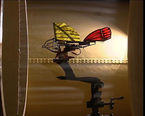 《我爱发明》9月4日节目内容——《机器鸟》